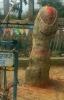 चौताा साँगाचोकगढी नगपालिकाको स्याउलेमा अवस्थित हर्लङ्ग बर्लङ्ग महादेवको मुर्ति